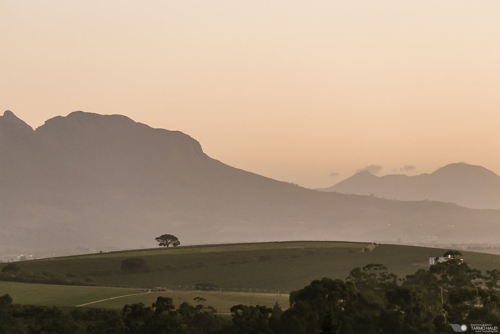 Devon Valley, Stellenbosch