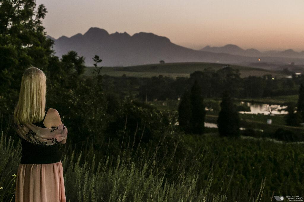 Devon Valley, Stellenbosch